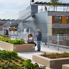 A man and a woman sample fruit from a rooftop garden of a new apartment complex.